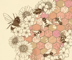 honeycomb, bumblebee, and queenbee image