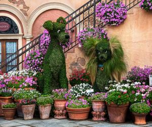 flowers, disney, and dog image