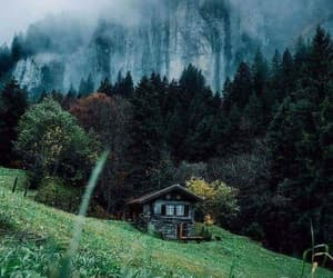 nature, green, and mountains image