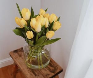 yellow, bouquet of flowers, and yellow tulips image