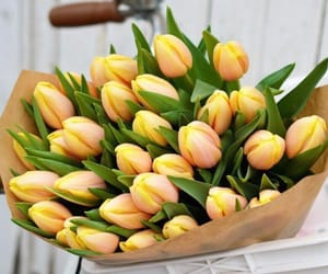 spring, tulips, and bouquet of flowers image
