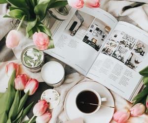 bambi, book, and coffee image