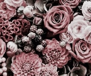 flowers, background, and aesthetic image