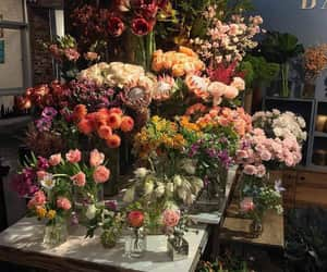 flowers, aesthetic, and floral image