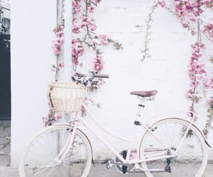 beauty, bike, and spring image