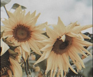 clouds, motivation, and sunflower image
