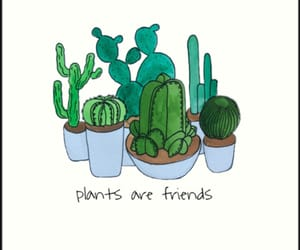 plants and friends image