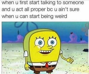 funny, spongebob, and meme image