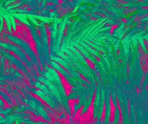 fucsia, verde, and green image