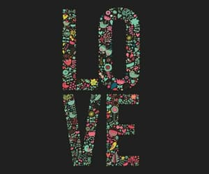 flower, wallpaper, and love image