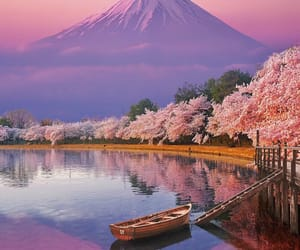 travel, nature, and japan image