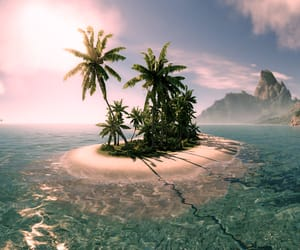beaches, Island, and oasis image