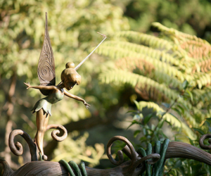 disney, fairy, and garden image