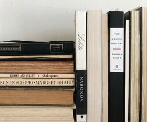 beautiful, book, and book shelf image