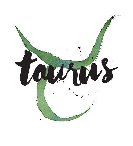 taurus, bull, and zodiac image