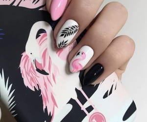 nails, flamingo, and pink nails image