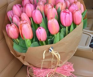 flowers, tulips, and beauty image