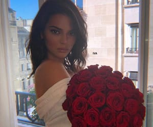 kendall jenner, rose, and model image
