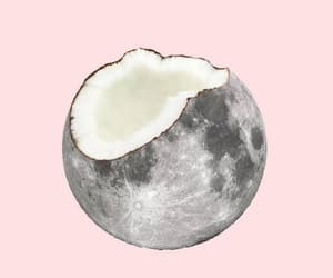 moon, coconut, and pink image
