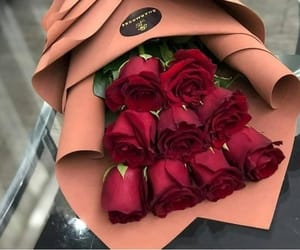 rose, flowers, and classy image