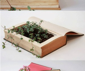 book, plant, and diy image