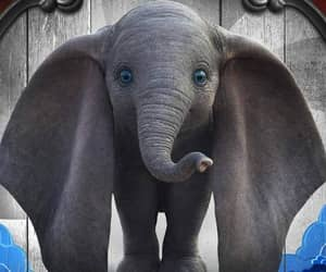 dumbo and movie image