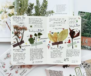 diary, journal, and journaling image