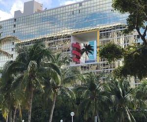 architecture, dreamworld, and palm trees image