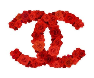 chanel, red, and roses image