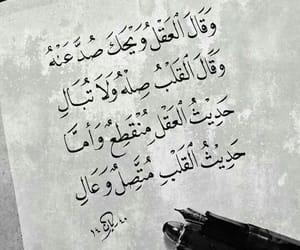arabic, dz, and tumblr image
