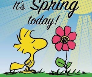snoopy and spring image