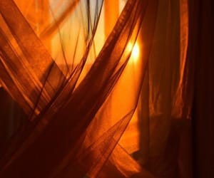 caramel, curtain, and lovely image