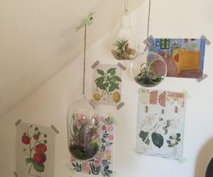 art, plants, and room image