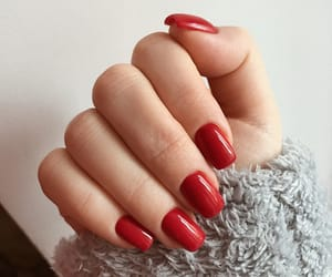 manicure, nails art, and nails image