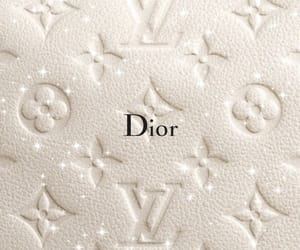 dior and Louis Vuitton image