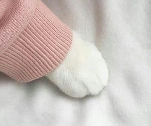 Cute 😍