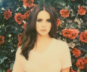 red, roses, and ️lana del rey image
