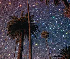 palm trees, beach, and glitter image