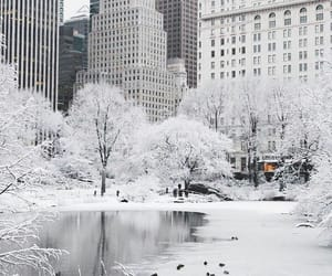 new york, winter, and travel image