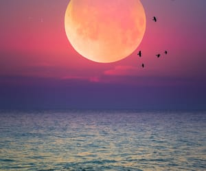 sunset, moon, and nature image