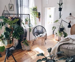 inspiration, interior, and leaves image