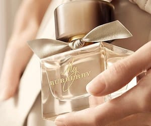 Burberry and perfume image