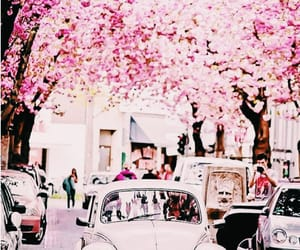 aesthetic, cars, and flower image