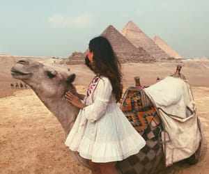 camel, girl, and travel image