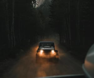 forest and jeep image