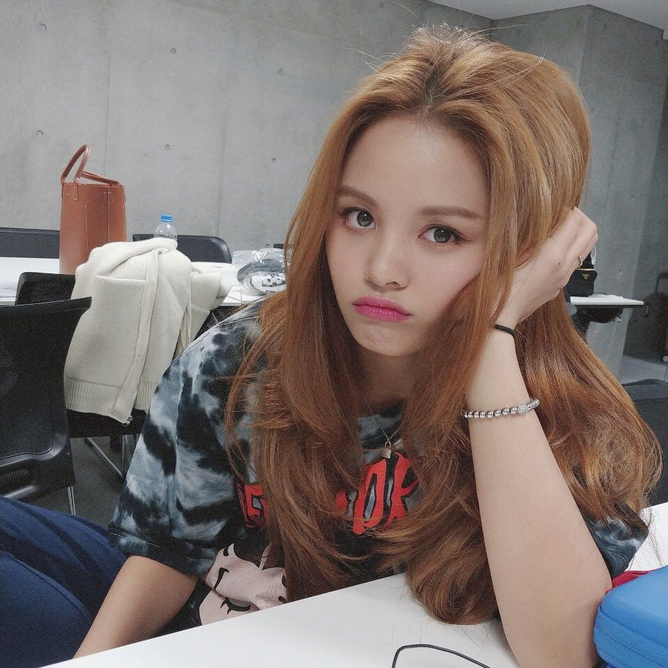 clc, sorn, and elkie image