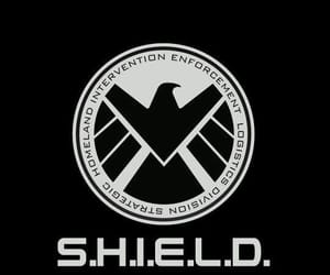 shield, Marvel, and wallpaper image