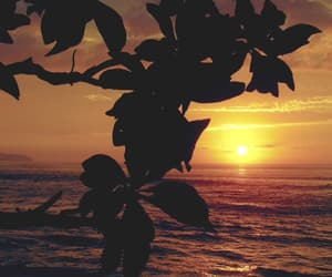 sunset and ocean image