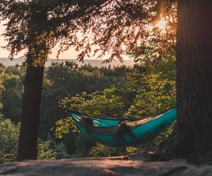 alone, green, and hammock image