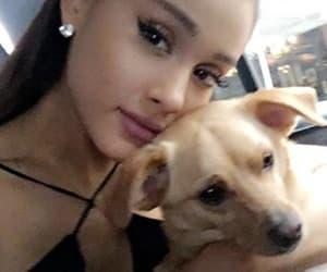 ariana grande, dog, and ariana image
